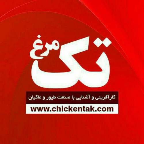 کانال مرغ تک