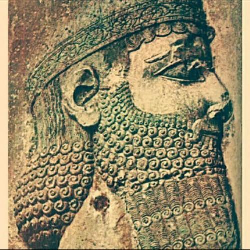 کانال تاریخ و باستان شناسی