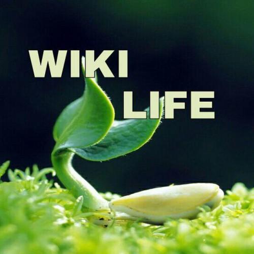 کانال تلگرام WIKI LIFE