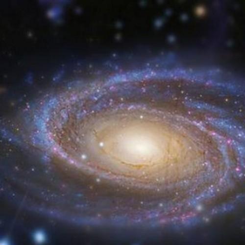 کانال آسمان شب (نجوم)