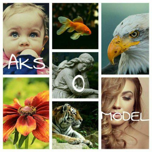کانال تلگرام عکس و مدل