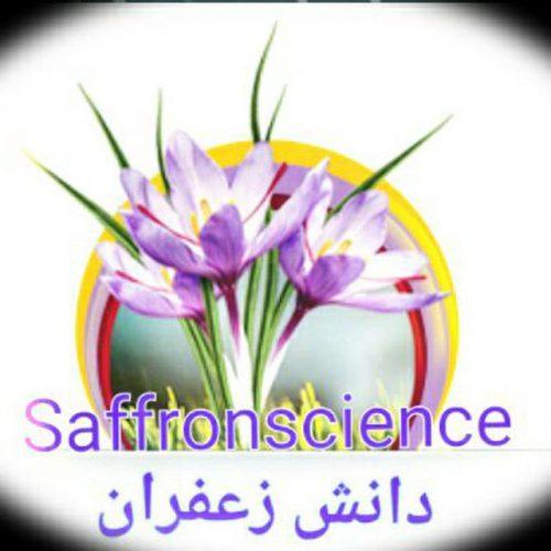 کانال تلگرام دانش زعفران