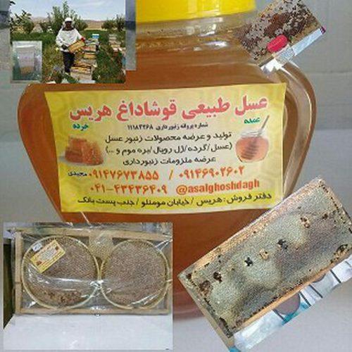 کانال عسل قوشاداغ هریس