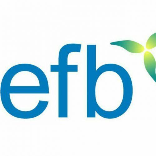 کانال تلگرام  EFB Milioner