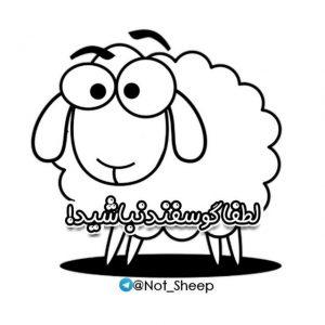 کانال لطفاً گوسفند نباشید !