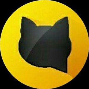 کانال Cat_Fun