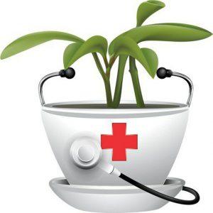 کانال داروخانه گیاهی