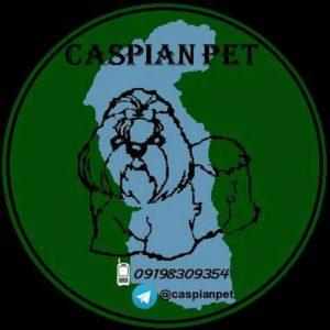 کانال caspianpet