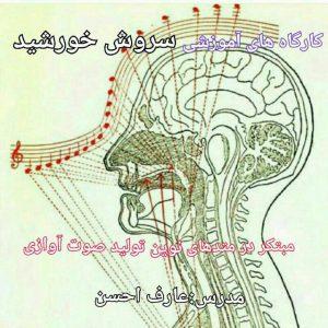 کانال صدا ، آواز ، آموزش ، موسیقی