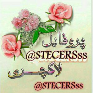 کانال Stecrsss@پروفایل لاکچری