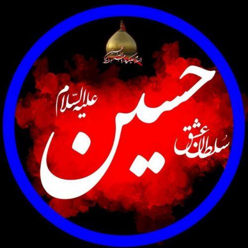 کانال زیارت الحسین ع ( کلیپ و تصاویر کربلا)