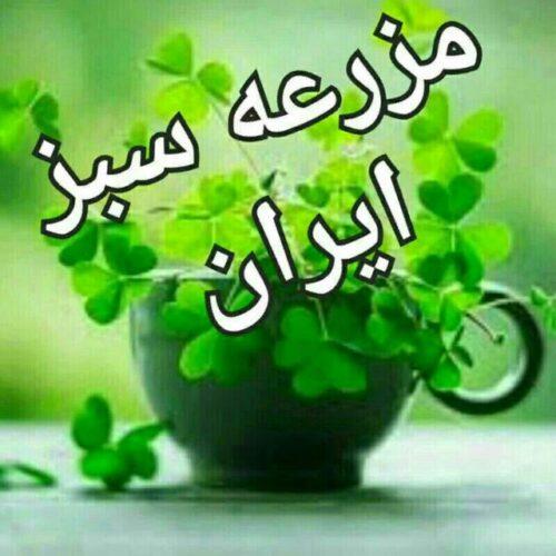 کانال 🍀🍀مزرعه سبز ایران🍀🍀