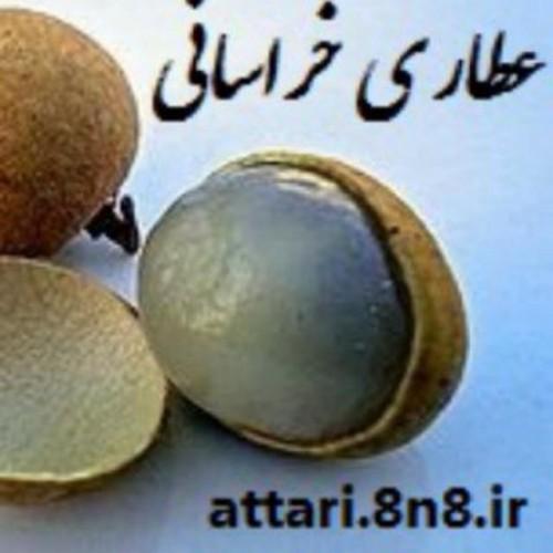 عطاری خراسانی (طب سنتی )