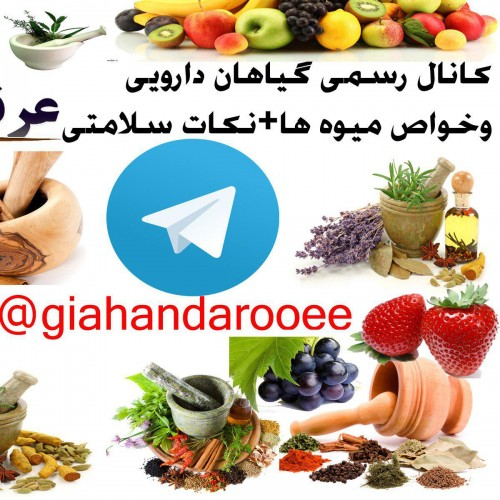 کانال تلگرام گیاهان دارویی